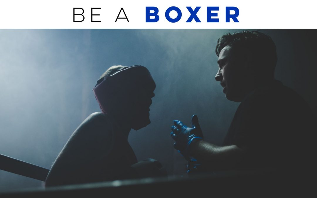 Be a boxer