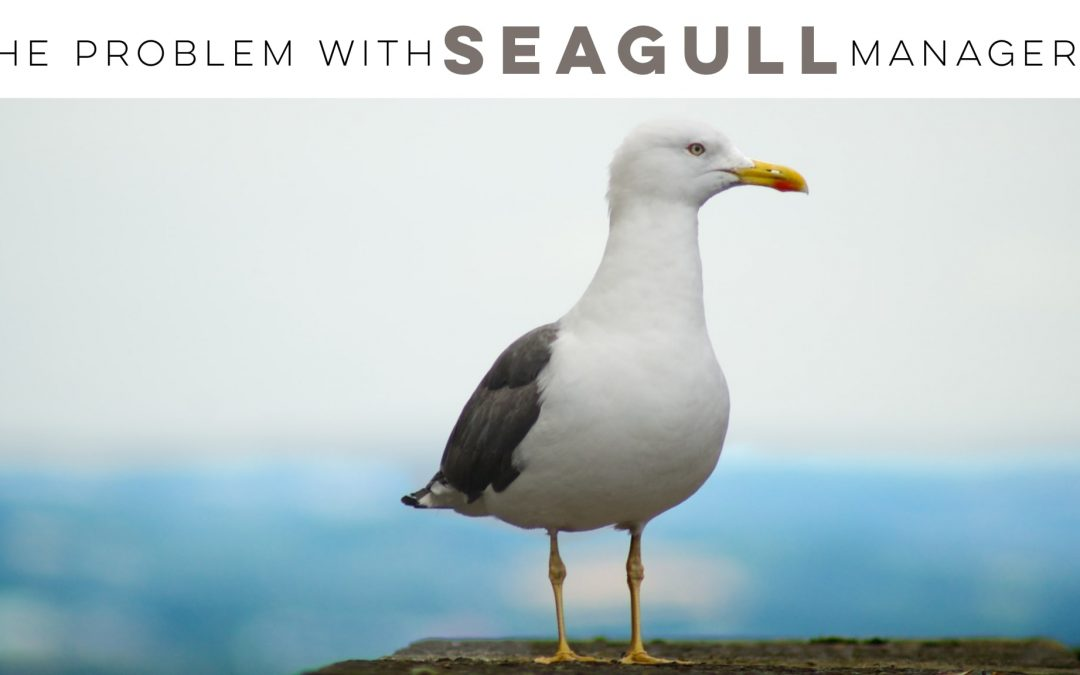The problem with seagull managers